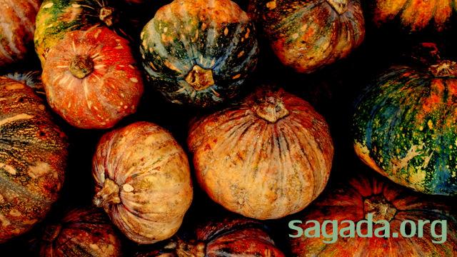 sagada-halloween-2010-001